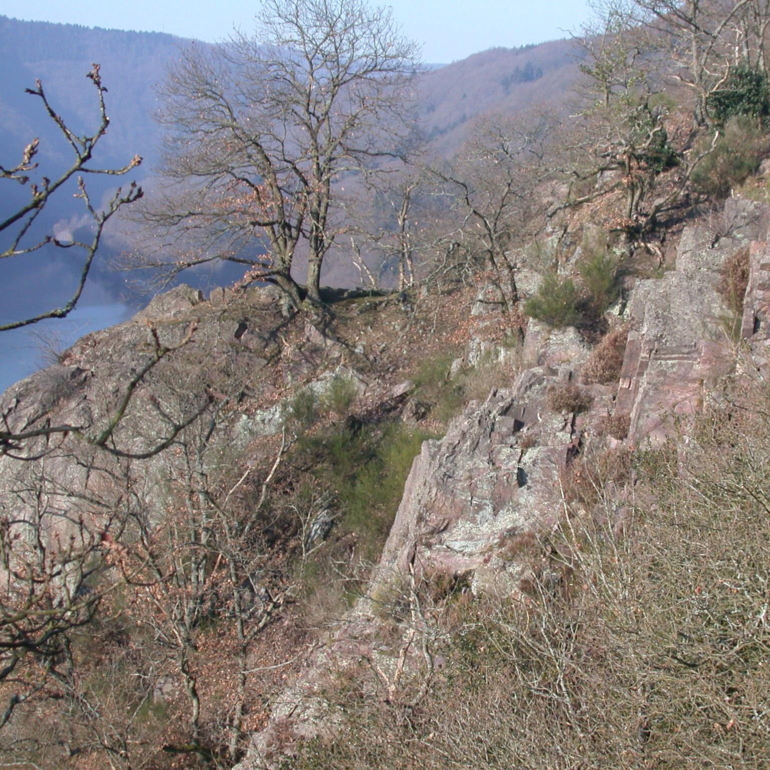 Vogelfelsen bei Saarhölzbach